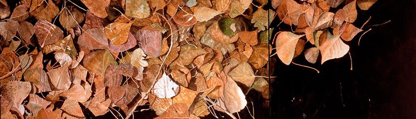 Autumm Leaves (60 x 140 cms.)