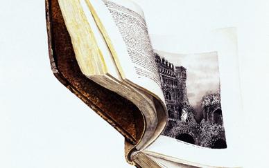 Book Flying III (52 x 40 cms.)