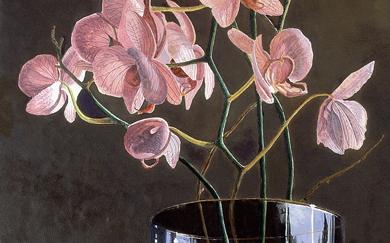 Orchids (60 x 35 cms.)