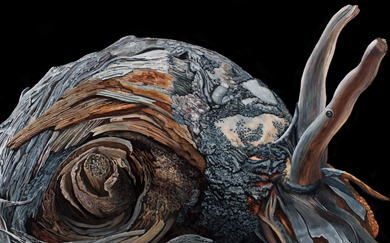 Bestiary VIII · Snail · 53x73 cms.