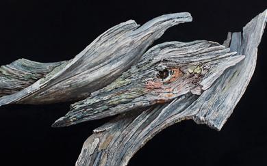 Bestiary VII · Winged Bird · 50x70 cms.