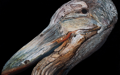Bestiary IV · Crane's head · 40x40 cms.